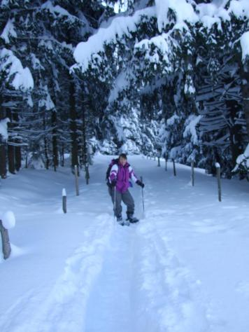 Snow shoes Algau 842961_4955903308842_18761933_o