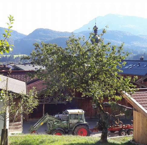 tractor and mountains - Reit-im-W