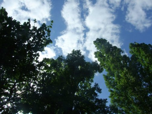 Look up and breathe.France 2012