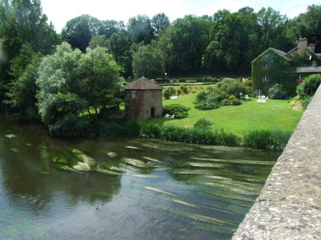 River Orne.France 2012