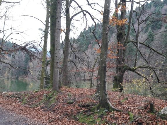 Geierstein 2 9th November 2017. Route 611 frm Lenggries