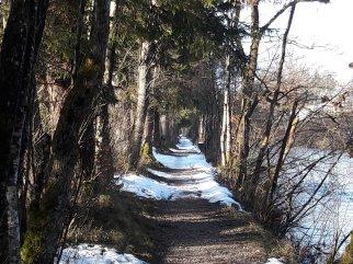 Walk from Aigen to Strobl